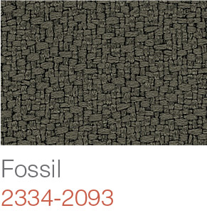fossil-2334-2093-hr